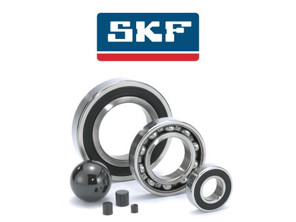 skf-tab1